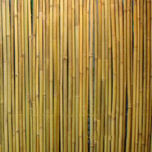 Rull bambusaed IN GARDEN D14/16mm 1.5x3m