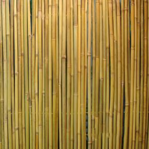 Rull bambusaed IN GARDEN